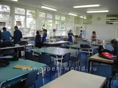 Glendowie College, Auckland (22)