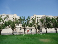 American University in Dubai (AUD)