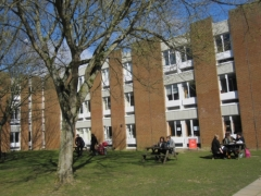 University of Sussex_6